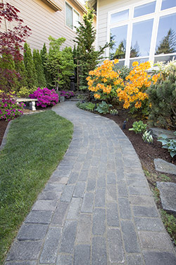 Walkways Paver Walkways Nashville Mt Juliet Madison TN